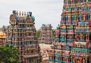 Mini South India