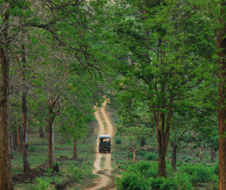 kabini_river_lodge