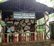 seethanadi_nature_camp