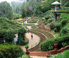 Government_Botanical_Gardens_img1