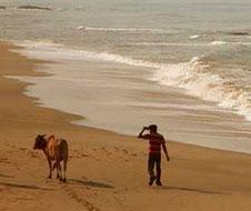 majali_beach_img1