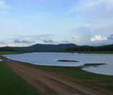 nagarhole_national_park_img1
