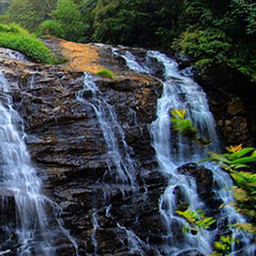 special_trip_to_coorg_2