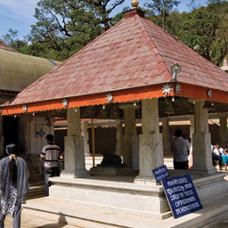 nagarahole-madikeri-nisargadhama-golden-temple-bylekuppe-2